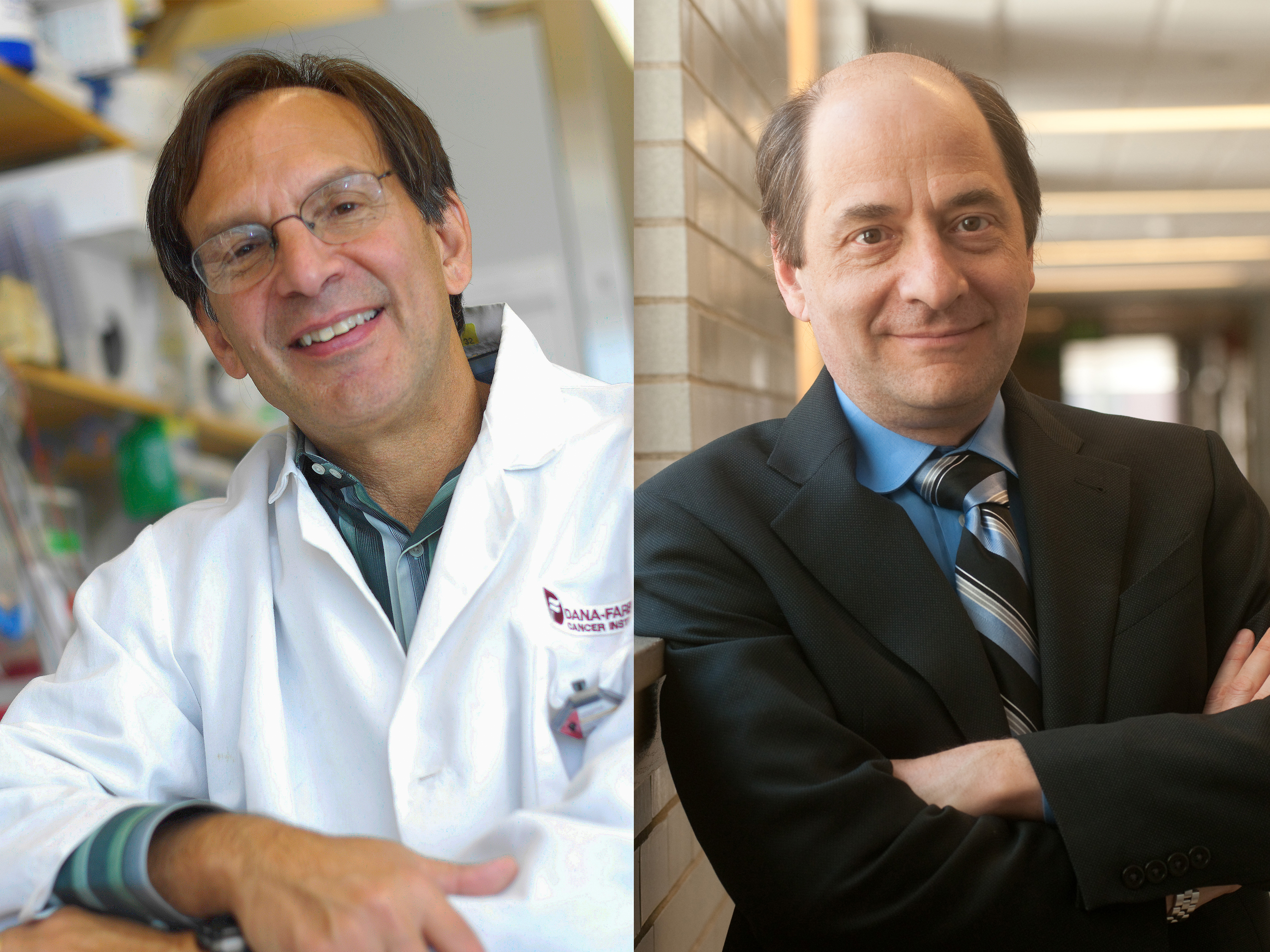 Dana-Farber researchers find exercise-induced brain growth protein ... 0d4fc3e2e951