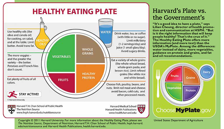 Healthy Plate, Healthy Planet | Harvard MagazineHarvard Magazine