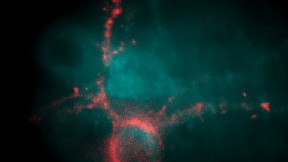 Genetic alterations allow researchers to observe the electrical firing of a neuron (pink) as a flash of light, detectable by specially modified optical microscopes.