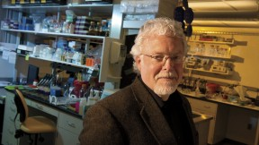 Michael Gilmore directs the Harvard-wide Program on Antibiotic Resistance. He has used genomic techniques to trace the evolution of antibiotic-resistant bacteria.