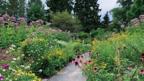 View of summer garden in bloom with walking path