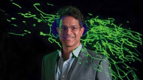 Vamsi Mootha with an image from his lab showing thread-like mitochondria (green) moving within a cell.