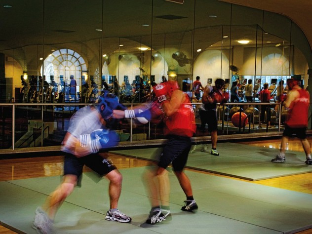 Members of the Harvard Boxing Club spar in the Malkin Athletic Center.