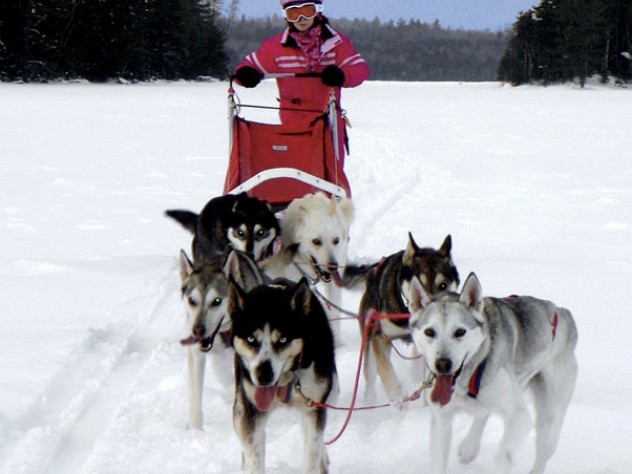 Ariel Silverman, 10, enjoys dogsledding with her family in northern Maine at Nahmakanta Lake Wilderness Camps.