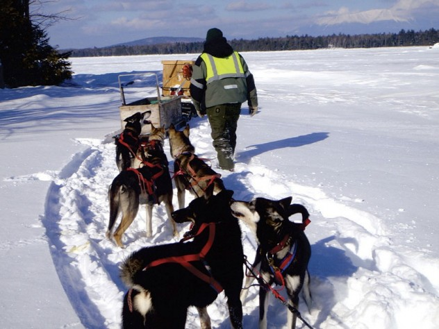 "Nahmakanta owner Don Hibbs says his dogsledding runs offer a ""one- or two-day adventure for people who love animals."""