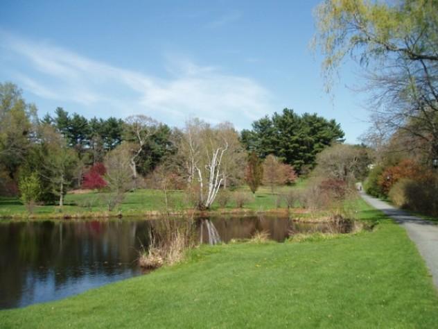 Paramecium Pond at Wellesley College