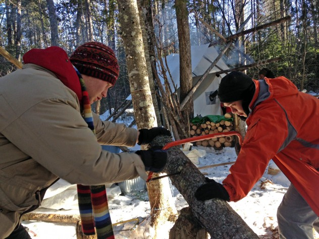 Martin Reindl '15 (left) and  Joey Kim '15 saw a felled tree to use for fire wood.