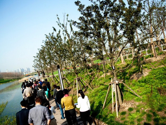 GSD students, alumni, and other Harvard guests tour the award-winning waterfront park at Shanghai's Expo 2010 site—an alternative, green model for development.