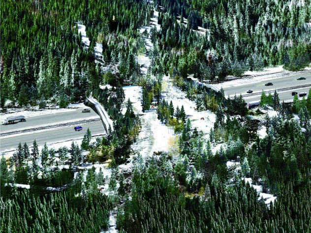 The winning wildlife-crossing design distills multiple habitat types from the surrounding landscape into parallel bands that act as corridors for various animal species. Wide bands provide an open field of view, while narrow forest and shrub bands provide enclosed corridors.