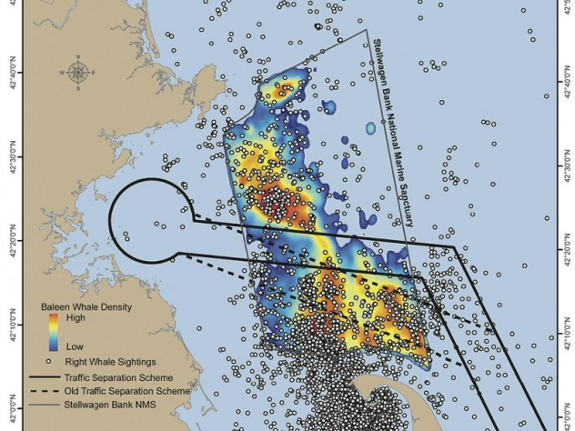 In this map of the Stellwagen Bank National Marine Sanctuary, the dots show right whales; the colors, the density of baleen whales.