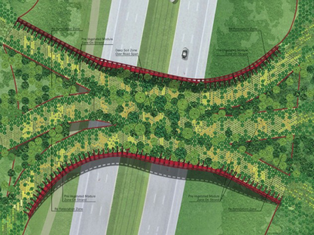 An overview of the vegetation plan for the crossing as proposed in the submission from Janet Rosenberg & Associates