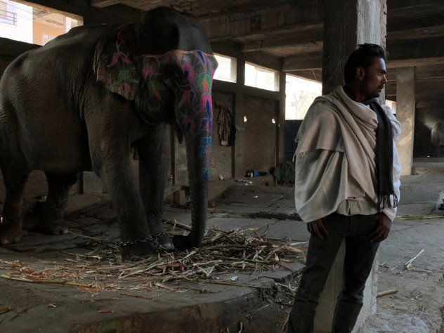 Before Mehrotra's firm won the contest to design the elephant village, the government built its own housing for the elephant keepers: a concrete-block building in an urban setting. The <i>mahouts</i> who still live here say they will move to Hathigaon as soon as more homes are complete there.