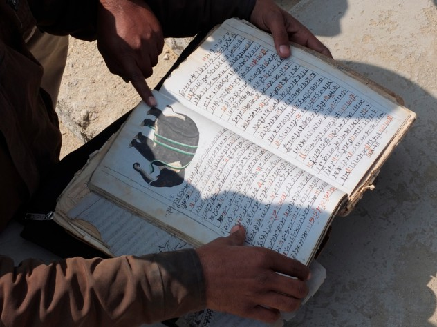 Mehrotra examines a book of traditional remedies for elephant ailments.