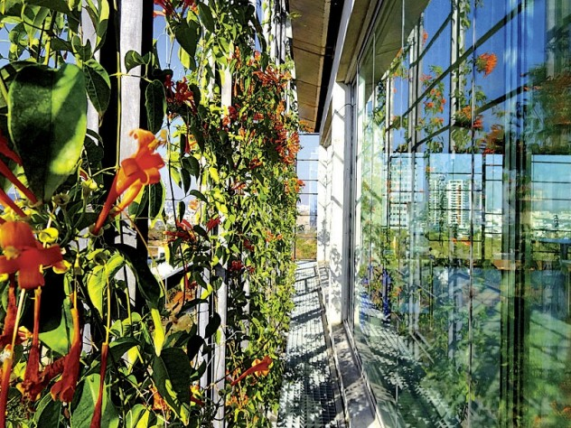 Plants on the latticed outer façade, hydrated by a misting system, provide shade and fresh breezes.