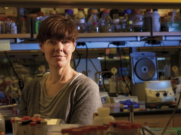 Suzanne Walker discovered targocil, a molecule that blocks certain mechanisms of drug resistance.