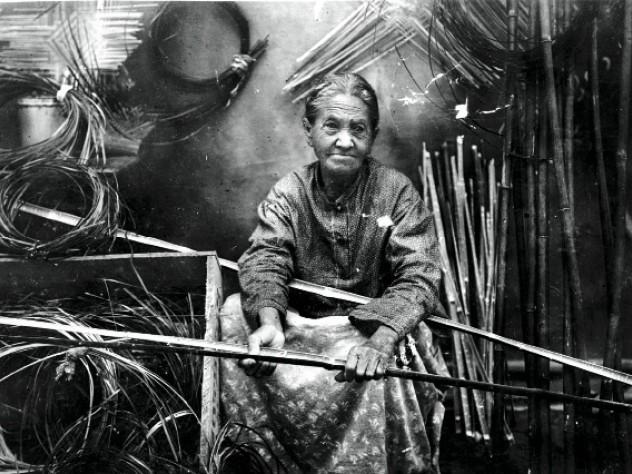 Darden preparing river-cane splints for weaving, c. 1900.