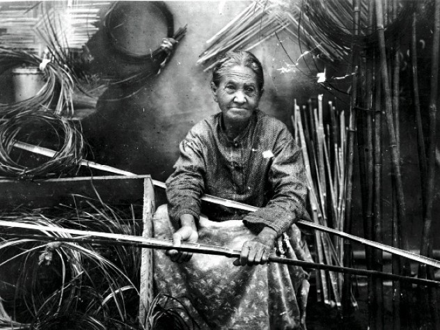 Darden preparing river-cane splints for weaving, c. 1900.
