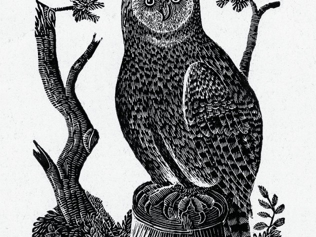 "Jonathan Fisher's wood engraving ""The Great Owl,"" from his book <i>Scripture Animals,</i> and his home in Blue Hill, Maine"