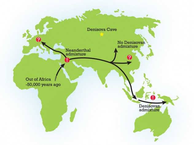Early modern humans likely encountered Neanderthals and Denisovans after migrating from Africa approximately 50,000 years ago.