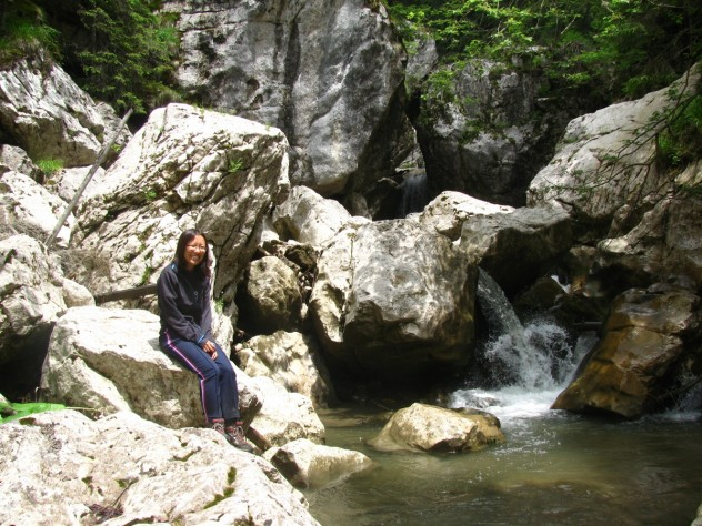 River in a gorge in Romania's Carpathian mountains, one of the collecting sites.
