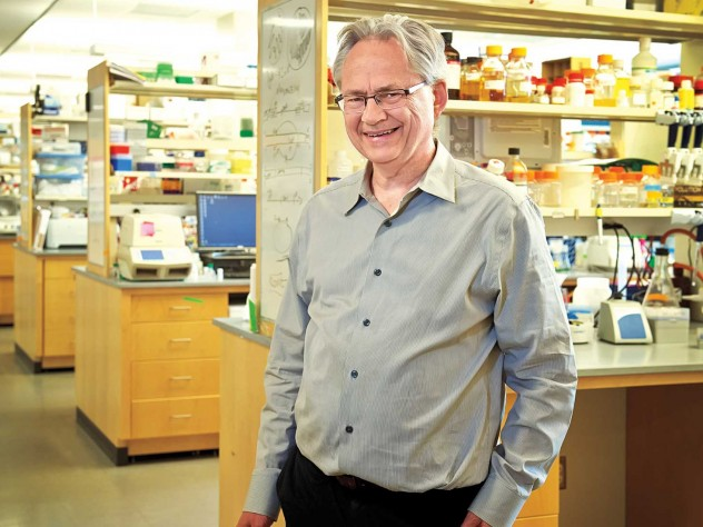 Jeffrey Way is part of a team that engineered cyanobacteria to produce sugars from photosynthesis more efficiently.