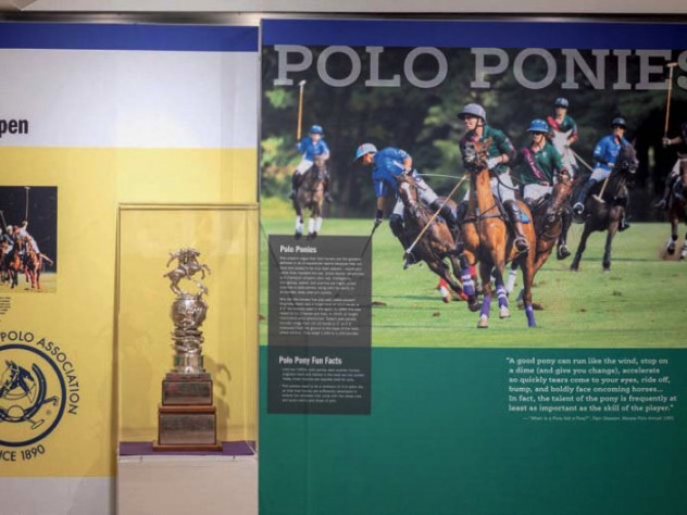 A display about polo, which still attracts fans and players in Massachusetts and at Harvard.