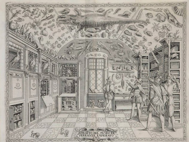 From <i>Cabinets of Curiosity and Rooms of Wonder</i> at the Houghton Library