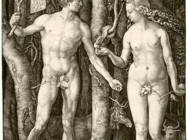 Dürer's 1504 <i>Adam and Eve,</i> a study of the perfect human body, from early in his career, presaged lifelong interests: from studies of human proportion to natural­istic renderings of plants and animals.