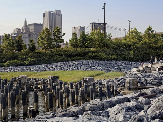 In the park: natural habitat—a newly created salt marsh—at the urban edge