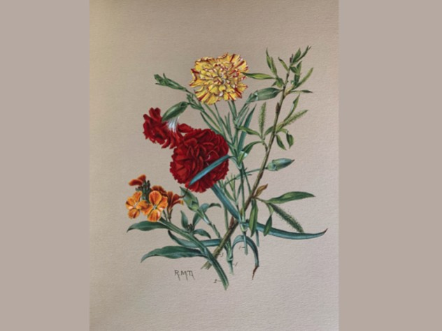 Painting: Carnations, Gillyvors, Willow