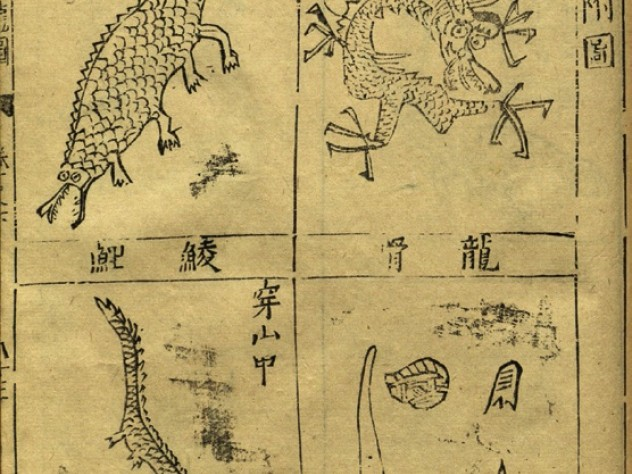 Pages from a first edition of the <i>Bencao gangmu</i> illustrate insects demonic and quotidian (previous image) and assorted dragons and their bones, all prescribed by Li for use in medicinal drugs.