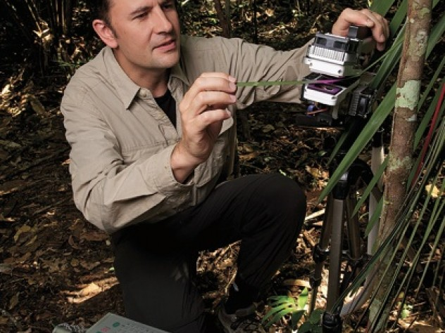 Professor Paul Moorcroft measures photosynthesis in an understory palm.