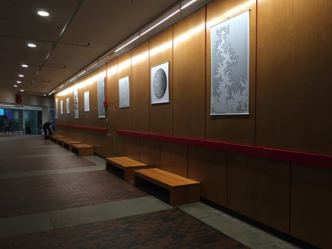 Curtis McMullen's sketches hang in the Science Center lobby