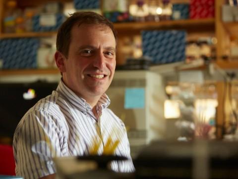 Epidemiologist Marc Lipsitch