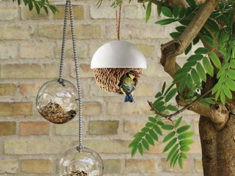 Two hanging bird feeders plus a hanging nesting basket dangle from a tree branch.