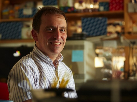 Photograph of Marc Lipsitch in his lab