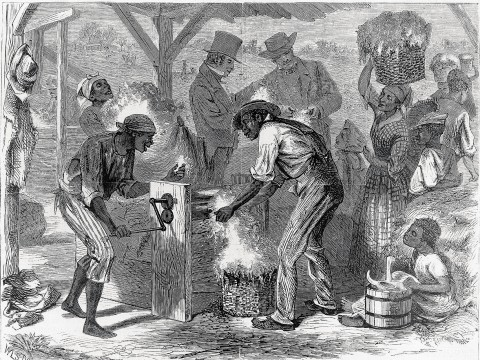 <i>The First Cotton-gin, </i>by William L. Sheppard, published in<i> Harper&rsquo;s,</i> December 18, 1869, shows slaves at work&mdash;and masters who profited from their labor.