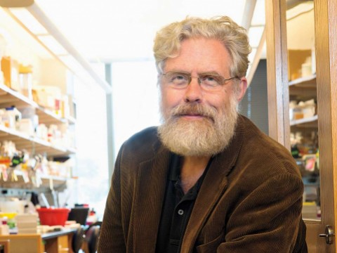George Church&rsquo;s lab has reengineered the genetic code of the bacterium <i>Escherichia coli</i> to make it resistant to viral infection.