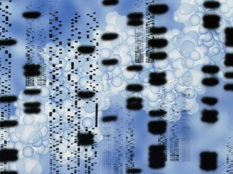 Computer artwork of an autoradiogram of DNA sequences.