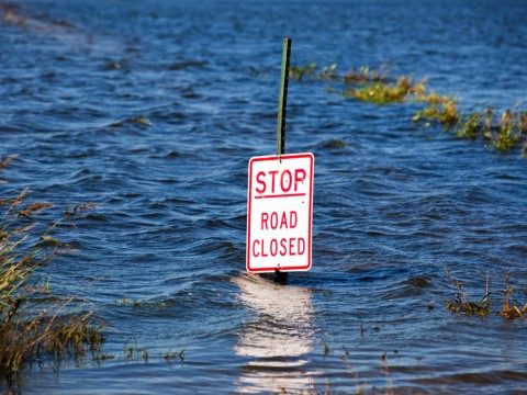 """A traffic sign with the words """"Stop Road Closed"""" submerged in several feet of water"""