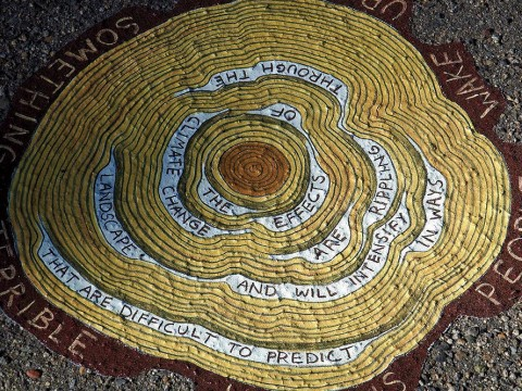 """An image from Gilens's """"Reading Forest""""  installation, a sketched cross-section of a tress with words interspersed in the rings. They read: """"The effects of climate change are rippling through the landscape and will intensify in ways that are difficult to predict."""""""