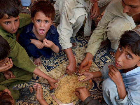 Pakistanis eating rice, a staple crop and major source of protein in South Asia.