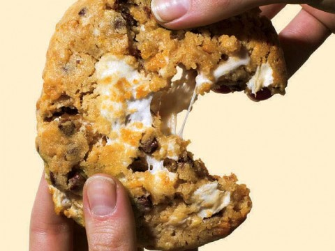 "Photograph of cornflake chocolate chip marshmallow cookie from the book ""Science and Cooking"""